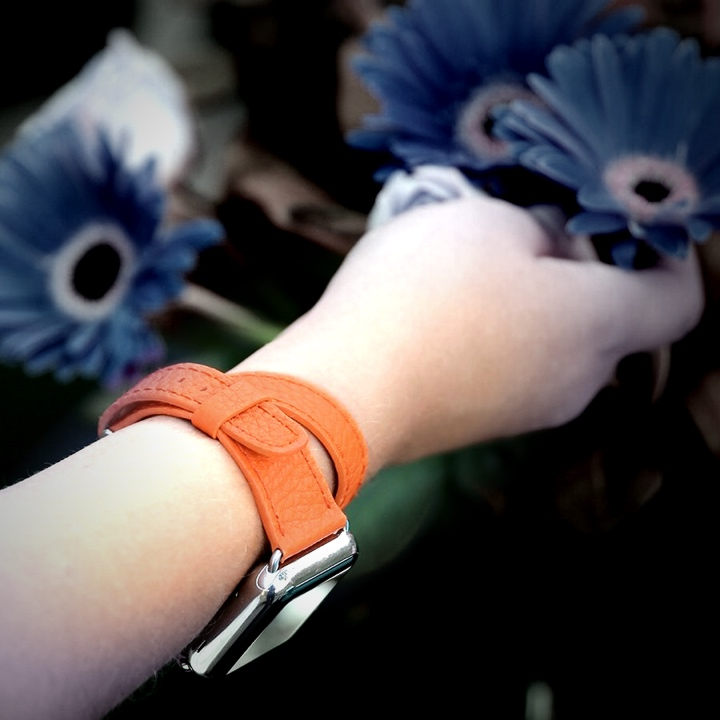 Apple Watch Series 5 双圈表带 (40 mm) - 橘色 - 山羊皮